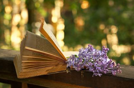 book-and-lilac2.jpg