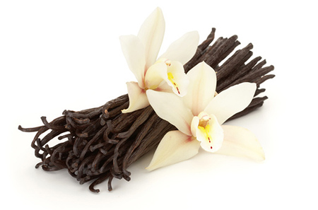 Vanilla – A Tea Party Secret