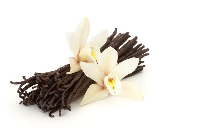 Vanilla – A Tea Party Secret