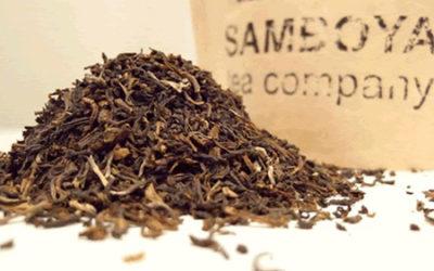 Darjeeling Tea – Enjoying the Exquisite