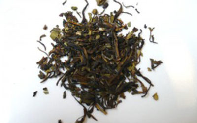 Smell the Goodness of Nilgiri Tea
