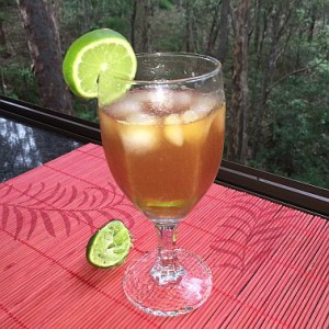 Red Bush or Rooibos served cold